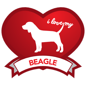 I Love My Beagle with Shaded Heart Magnet