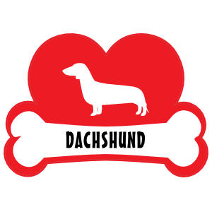 I Love My Dachshund with Dog Bone and Heart Sticker