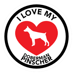 I Love My Doberman Pinscher with big Heart Circle Sticker