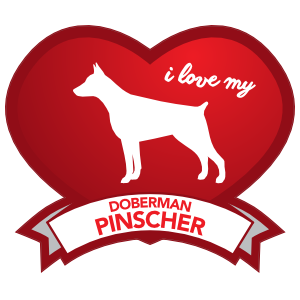 I Love My Doberman Pinscher With Shaded Heart Magnet
