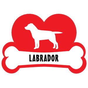 I Love My Labrador With Dog Bone And Heart Magnet