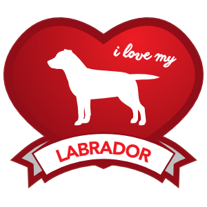 I Love My Labrador With Shaded Heart Magnet