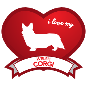 I Love My Welsh Corgi With Shaded Heart Magnet