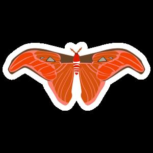 Interesting Butterfly Sticker