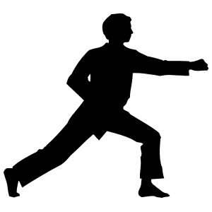 Martial Arts Karate Boy Practicing Sticker