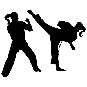 Two Martial Arts Karate Girls Sticker