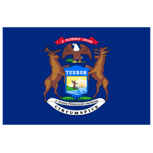 Michigan Mi State Flag Magnet