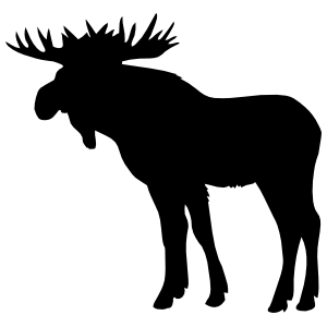 Handsome Moose Sticker