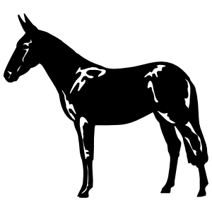 Mule Donkey Sticker