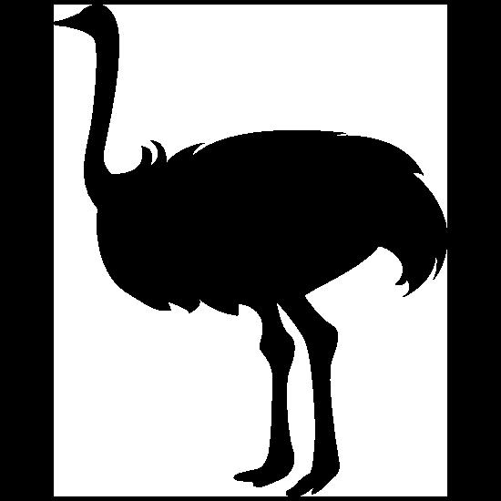 Ostrich Bird Sticker