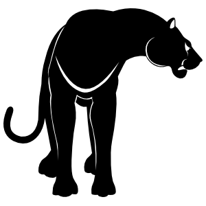 Growling Panther Sticker