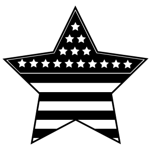 Patriotic Usa Star Sticker