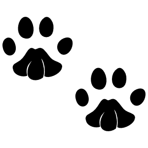 Little Paw Prints Sticker