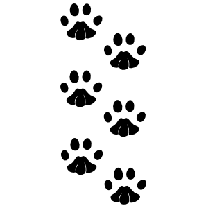 Adorable Paw Prints Sticker