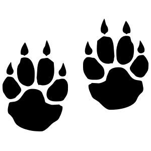 Paw Prints With Claws Sticker