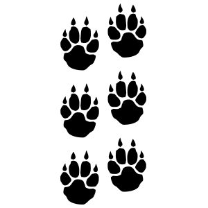 Multiple Paw Prints With Claws Sticker