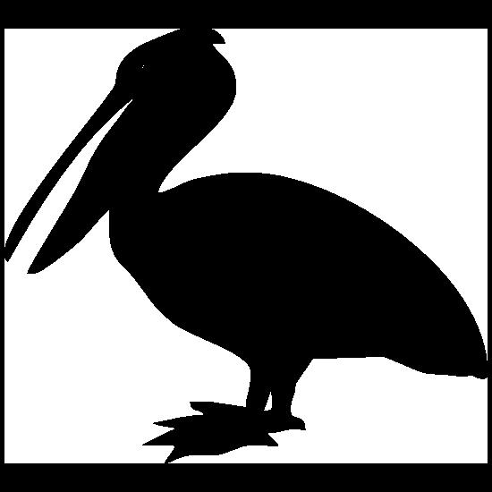 Pelican Bird Sticker