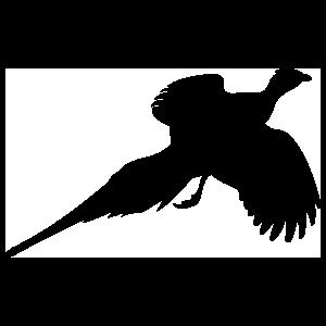 Pheasant Flying Sticker