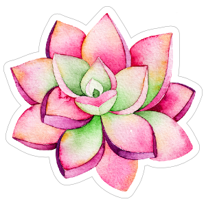 Pink and Green Watercolor Succulent Sticker
