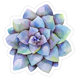 Purple Watercolor Succulent Sticker