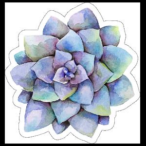 Purple Watercolor Succulent Sticker