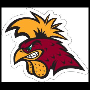 Serious Gamecock Mascot Sticker