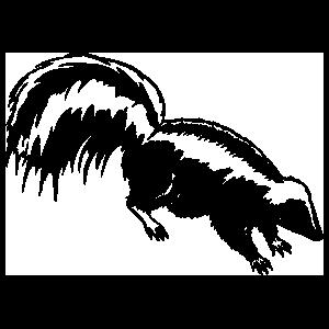 Skunk Smiling Sticker