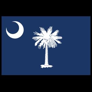 South Carolina Sc State Flag Magnet