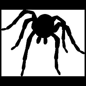 Symbolic Spider Sticker