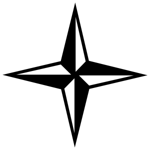 Four Pointed Star Sticker