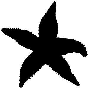 Solid Starfish Sticker