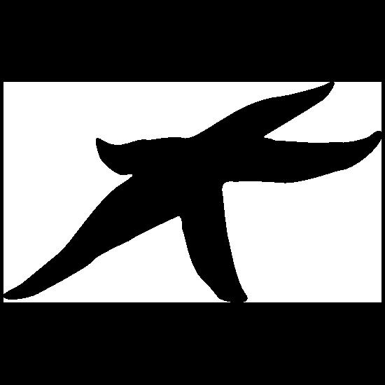 Flat Starfish Sticker