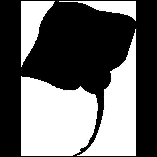 Stingray Manta Ray Sticker