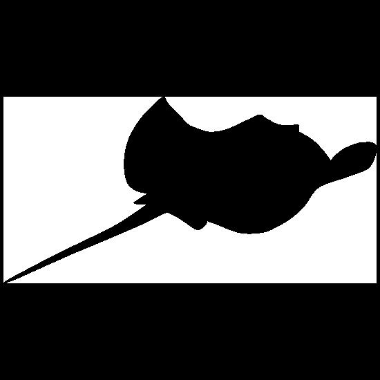 Stingray Manta Ray with Stinger Sticker