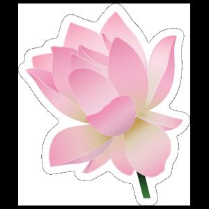 Sweet Pink Lotus Flower Sticker