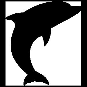 Swift Dolphin Sticker