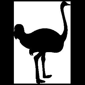 Tall Ostrich Sticker