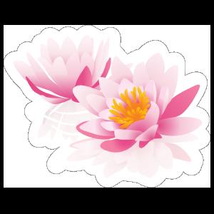 Two Pink Lotus Flower Sticker