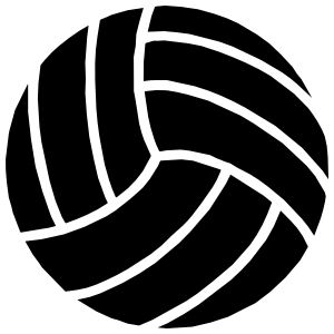 Cool Volleyball Sticker