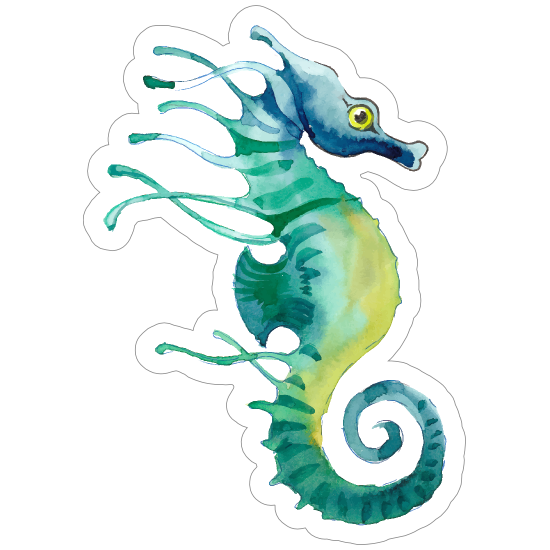 Watercolor Seahorse Sticker