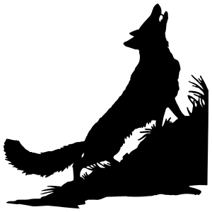 Coyote Wolf Howling In Grass Sticker