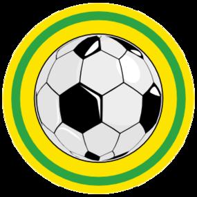 Custom Circle Soccer Ball Sticker