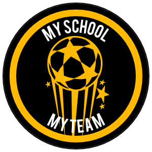 Custom Shooting Soccer Ball with Stars Circle Sticker