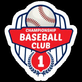 Custom Retro Baseball Emblem