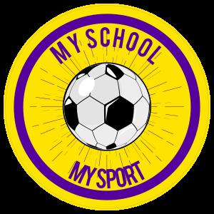 Custom Circle Soccer Ball with Burst Sticker