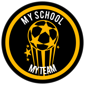 Custom Shooting Soccer Ball with Stars Circle Sticker