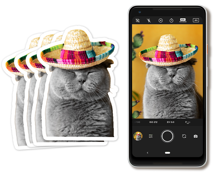 Cat Photo Stickers